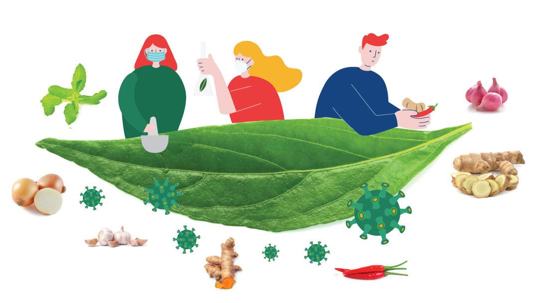 พืชผักสมุนไพร<strong>ป้องกันโรค</strong> COVID 19 #1