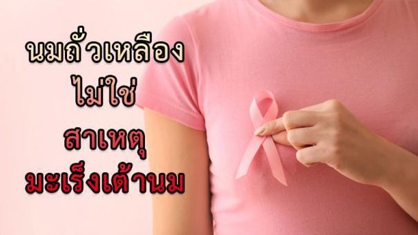 <strong>นมถั่วเหลือง</strong> ไม่ใช่สาเหตุ <strong>มะเร็งเต้านม</strong> #1