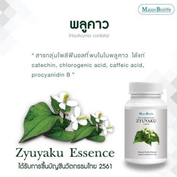<strong>ซุยยากุ แคปซูล</strong> <strong>Zyuyaku capsules</strong> #4