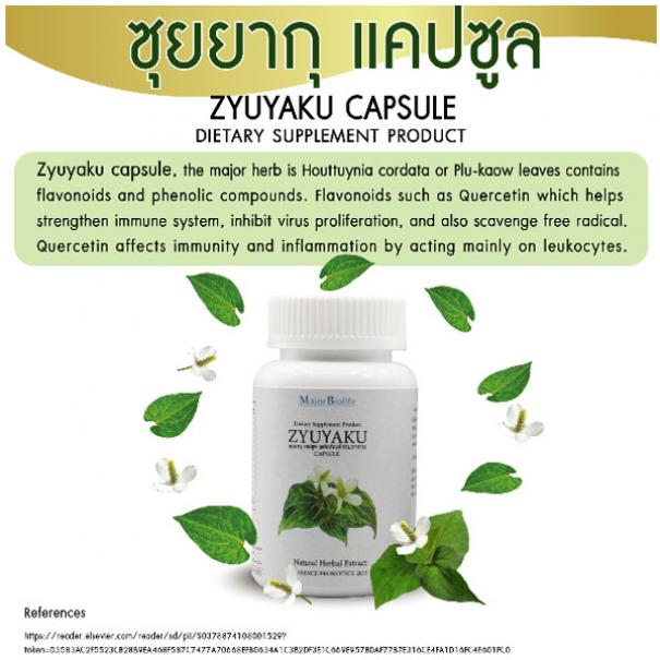 <strong>ซุยยากุ แคปซูล</strong> <strong>Zyuyaku capsules</strong> #5
