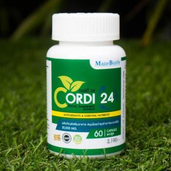 คอร์ดี้24 CORDI24